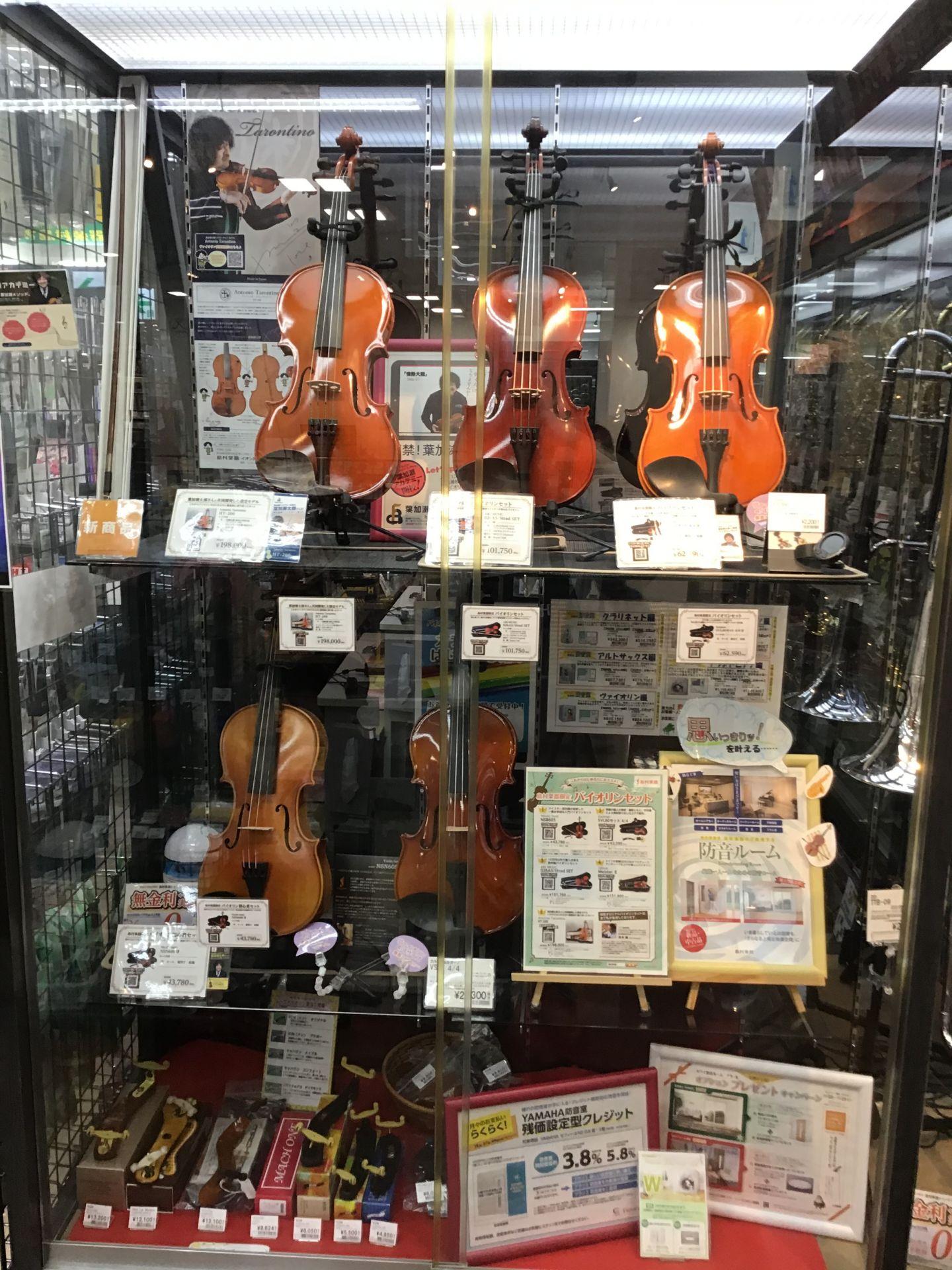 バイオリン 長岡店