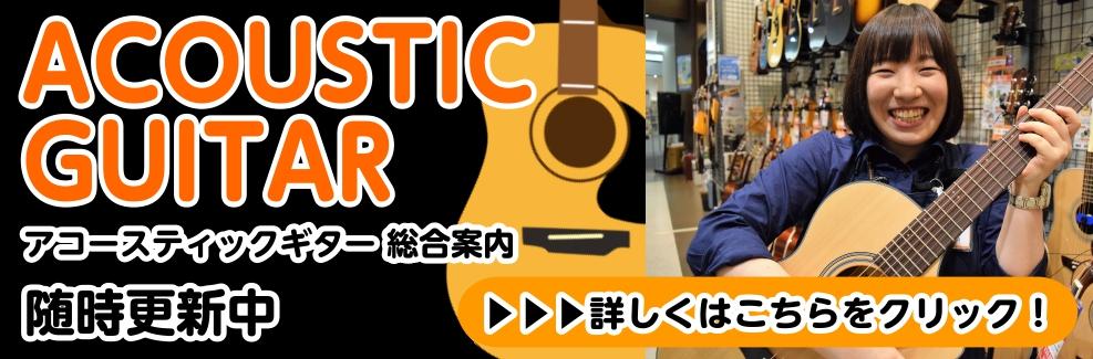 アコースティックギター総合情報ページ