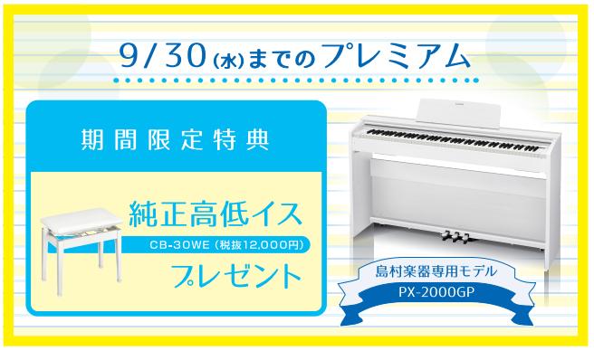 PX-2000GP CASIO イスプレゼント
