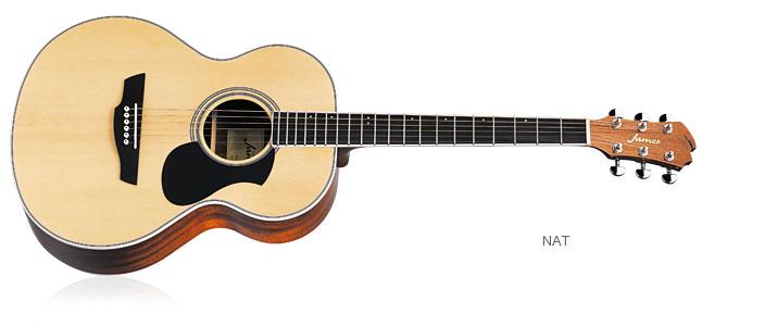 初心者ギター J-300A