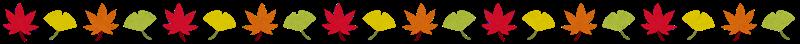 秋葉ライン