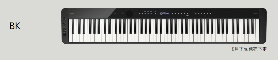 PX-S3100